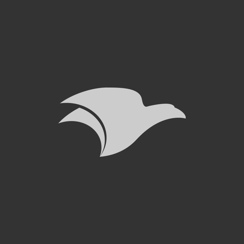 logo-design-autotrasporti-brescia